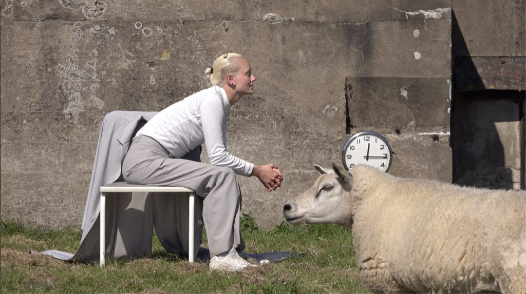 artist lisette ros during her 8 hour sitting performance with sheep by rob schroder